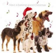 have a barking good Christmas!